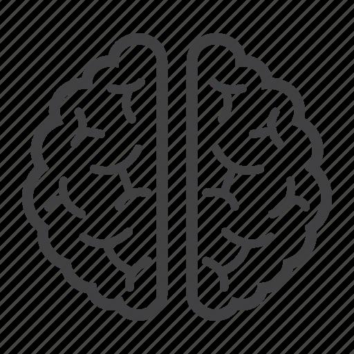 anatomy, brain, healthcare, human, idea, medicine, organ icon