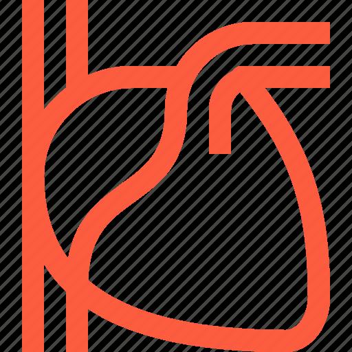 body, cardio, health, heart, human, medical, organ icon