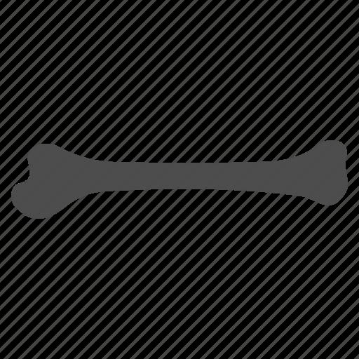 bone, bones, death, horror, leg, skeleton, surgery icon