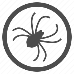 bug, infection, insect, parasite, pest, spider, web icon