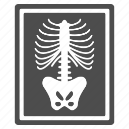 fluorography, radiology, radioscopy, skeleton, x-ray image, xray photo, xrays icon