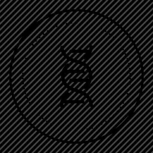 dna, medicine icon