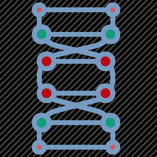 chain, dna, gene, genetic, nature icon