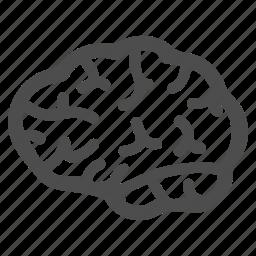 brain, idea, memory, mind, organ, think, thinking icon