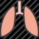 breath, lungs, organ, pulmonology icon