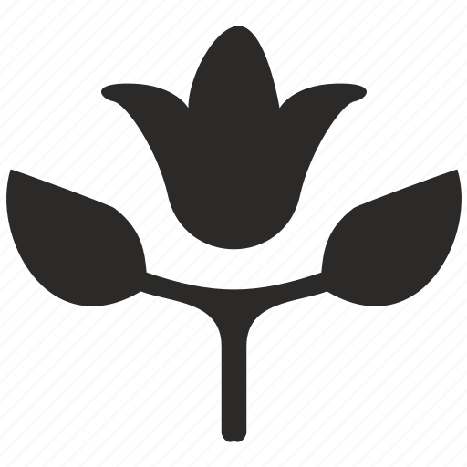 bud, flower, natural, plant, product icon