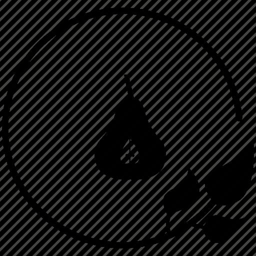 half, of, pear icon