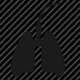 body, breathe, human, lung, medicine, organ icon