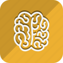 anatomy, bodypart, brain, healthcare, human, medical, medicine icon