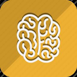 anatomy, bodypart, brain, healthcare, human, medical, medicine icon