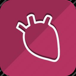 anatomy, bodypart, healthcare, human, medical, medicine icon