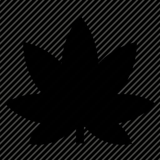 cannabis, ecology, leaf, marijuana, medical drags, nature, plant icon