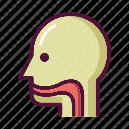 anatomy, ent, esophagus, nasopharynx, organ, patient, throat icon
