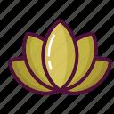 flower, lily, lotus, meditation, yoga, beauty, blossom