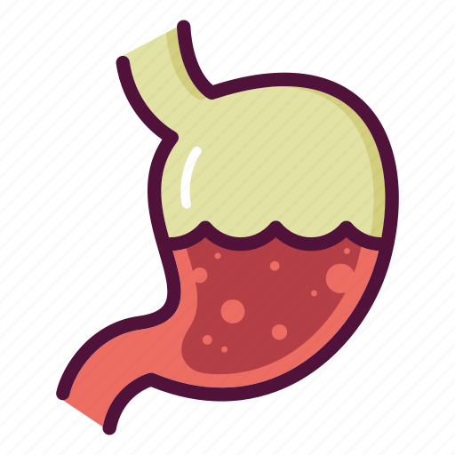 anatomy, biology, digestion, gastritis, gastroenterologist, organ, stomach icon