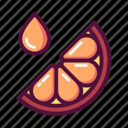 citrus, fresh, fruit, juice, lemon, orange, slice icon