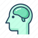anatomy, brain, head, human, idea, mind, nervous system icon