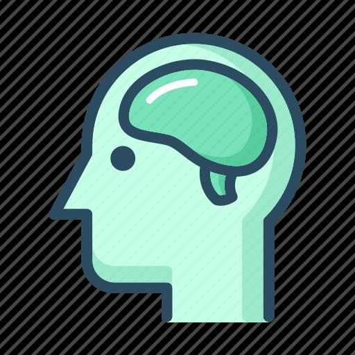 anatomy, brain, head, human, idea, mind, nervous system icon