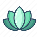 lotus, lily, meditation, flower, yoga, blossom, beauty