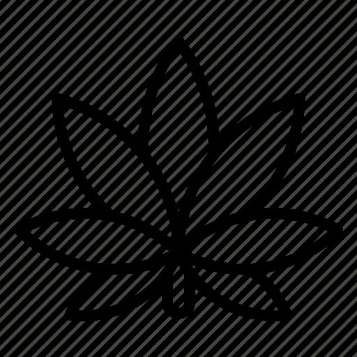 cannabis, drugs, flower, leaf, marijuana, medical, plant icon