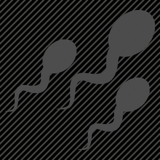 fertilization, human sperm, ovary, sperm, spermatozoon, veneric, virus icon