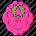 stroke, aneurysm, brain