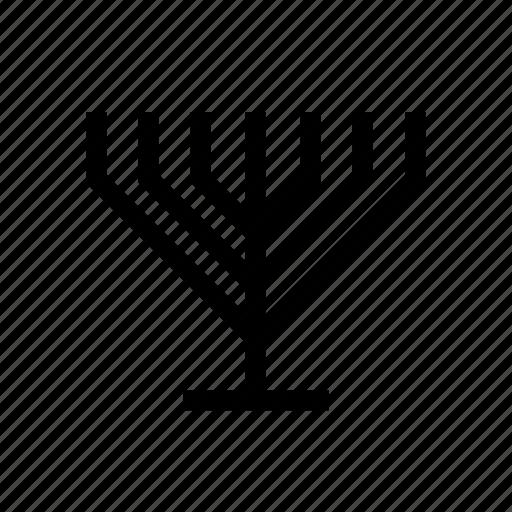 candelabrum, jewish, judaica, judaism, menora, menorah, traditional icon