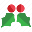 christmas, holiday, mistletoe icon