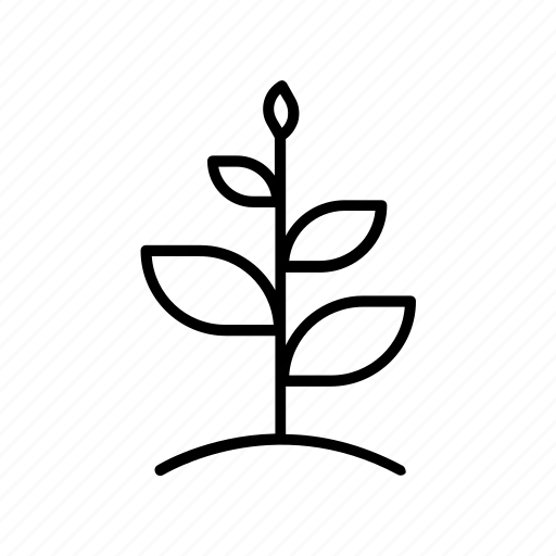 business, grow, growing, metaphor, plant, start up, startup icon