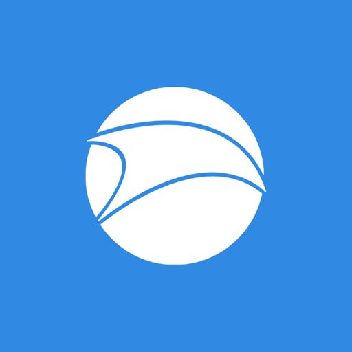iron, srware icon