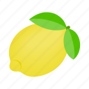 citrus, food, fruit, isometric, leaf, lemon, slice icon