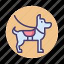 dog, k9, patrol, patrol dog icon