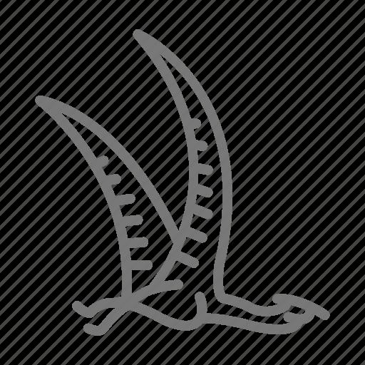Bird, dinosaur, jurassic, pterosaur, reptile icon - Download on Iconfinder