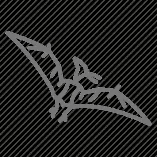 Bird, dinosaur, jurassic, prehistoric, pterodactyl icon - Download on Iconfinder