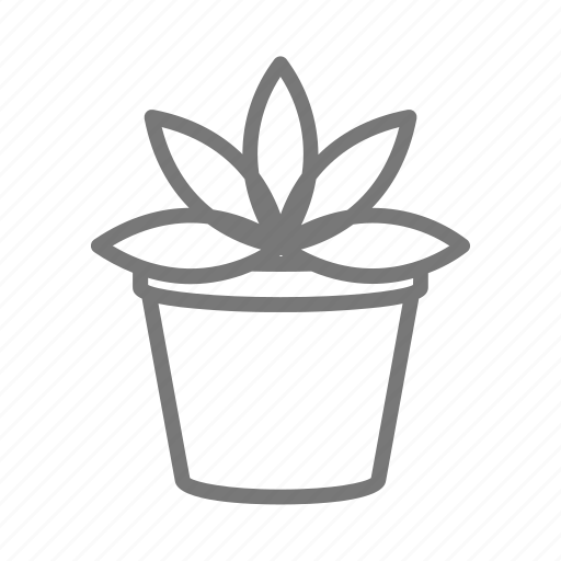 cactus, garden, houseplant, plant, pot, succulent icon