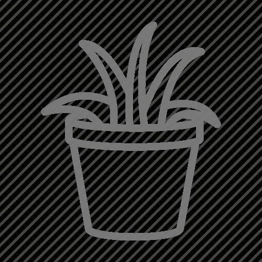 houseplant, leaf, leaves, plant, pot icon