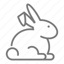 rabbit, pet, animal, bunny