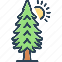 environment, evergreen, forest, pine, timber, tree, trees icon