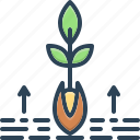 basic, grow, origin, root, soil, substantive, tree