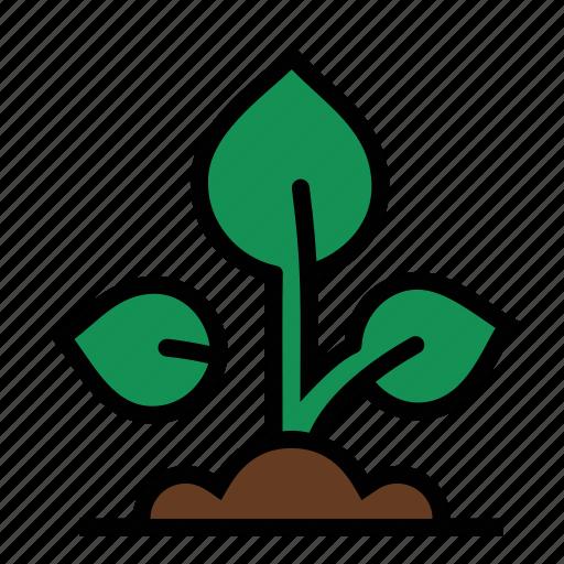 farm, farming, grow, growth, plant, seedling icon