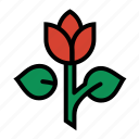 flower, garden, plant, rose, tulip icon