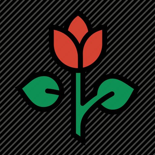 flower, garden, plant, rose, tulip icon