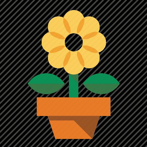 flower, flower pot, plant, sunflower icon