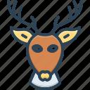 deer, head, antelope, animal, antler, horn, reindeer
