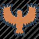 hawk, peregrine, osprey, bird, eagle, flying, freedom