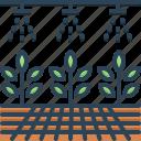 farming, gardening, husbandry, hydroponic, organic, plant, plantation