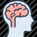 anatomy, brain, cerebellum, endocrine, hypothalamus, medical
