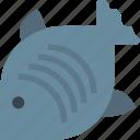 fish, fishing, sea icon