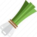 chives, healthy, vegetables icon