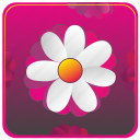 app, flower, mobile icon
